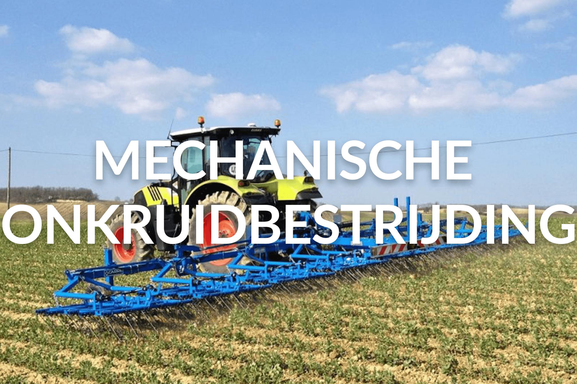 Carré_Mechanische onkruidbestrijding_GROOT