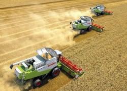 cropcatcher crop cather verluste vermeiden raps weizen tarwe koolzaad verlies vermijden ausfallgetreide ausfall getreide ausfallraps körnerfang aufwuchs schneidwerk